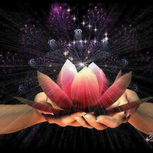 fleur de lotus pouvoir en toi