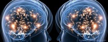 neurones-miroirs-role-utilite-900